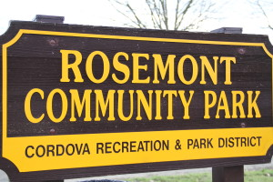 Your Input Needed for Park & Rec Future
