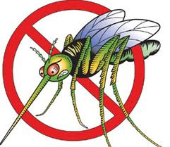 Learn How to Avoid West Nile Virus